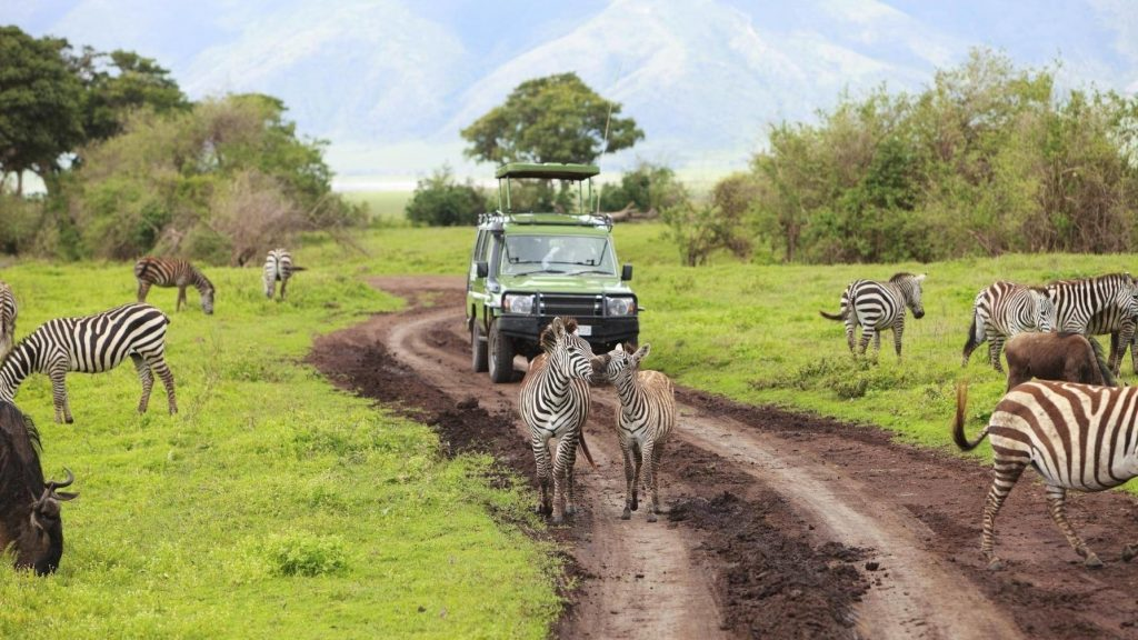 Guided Safari Holidays of Ghana